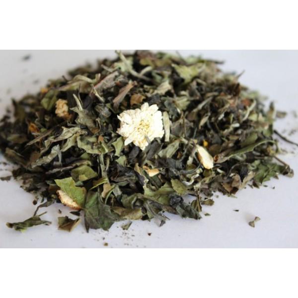 Biała Herbata Pomarańczowa Bryza